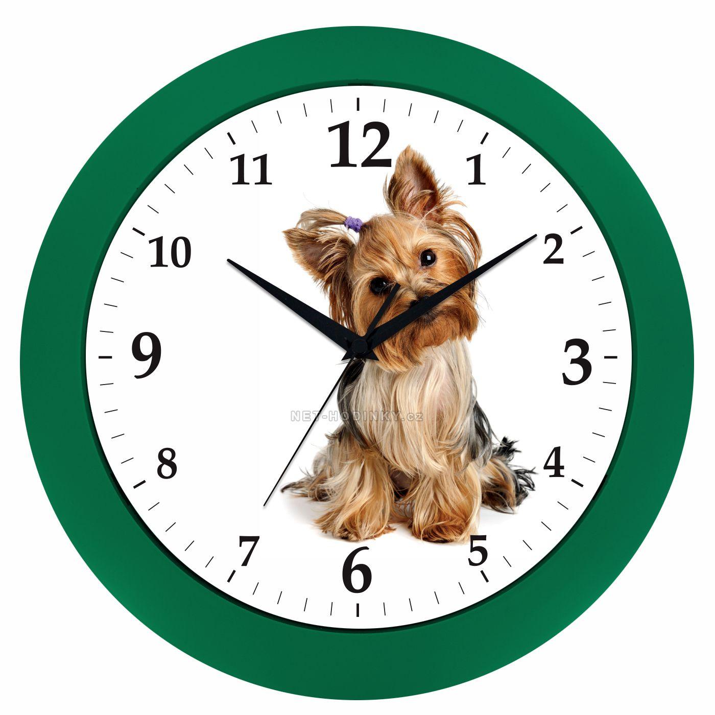 Nástěnné hodiny na stěnu, dětské hodiny S JORKŠÍREM hodiny na stěnu kulaté stříbrná jorkšír zelená